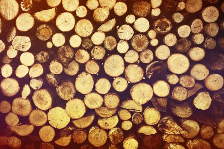Bois de chauffage Mont de Marsan, Bois de chauffage Saint Pierre du Mont, Drive bois Mont de Marsan, Drive bois Saint Pierre du Mont, Élagage Mont de Marsan, Élagage Saint Pierre du Mont, Travaux forestiers Mont de Marsan, Travaux forestiers Saint Pierre du Mont, Vente de bois Mont de Marsan, Vente de bois Saint Pierre du Mont
